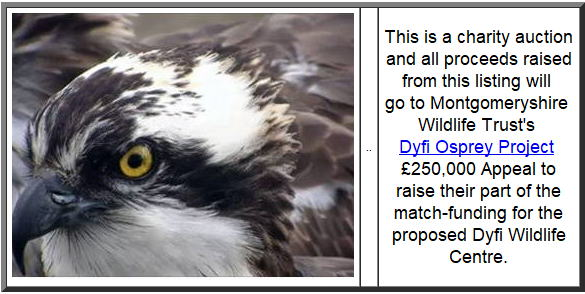 Dyfi Osprey Project